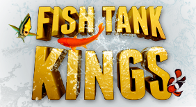 AAA_fishtankkings